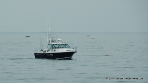Lake Erie Sport Fishing