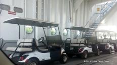 Golf Carts on Miller Boat Line