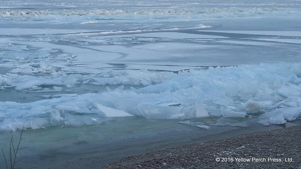 Lake Erie ice shove