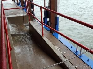 Lake Erie water level