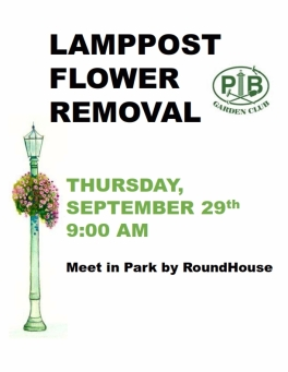2016-09-flower-removal_001