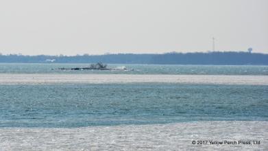 Starve Island, Lake Erie