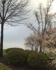 Lake Erie Weather