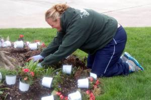 Garden care Put in Bay